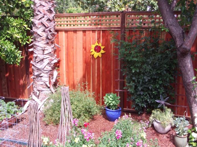 east fence.JPG
