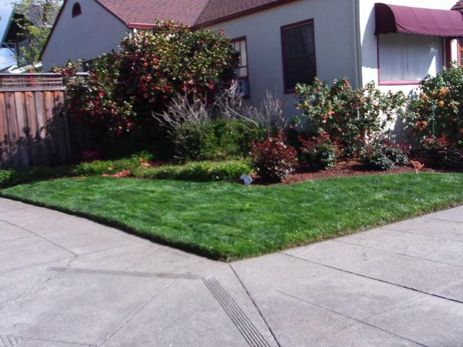 Lawn One.jpg