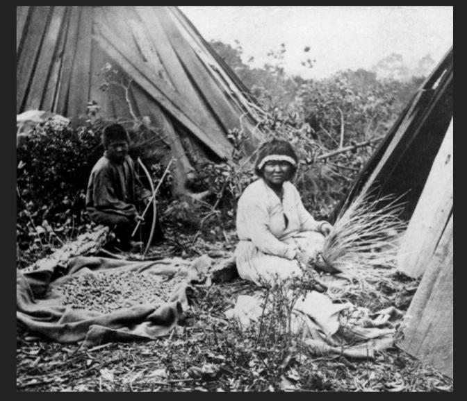 Pomo Indians